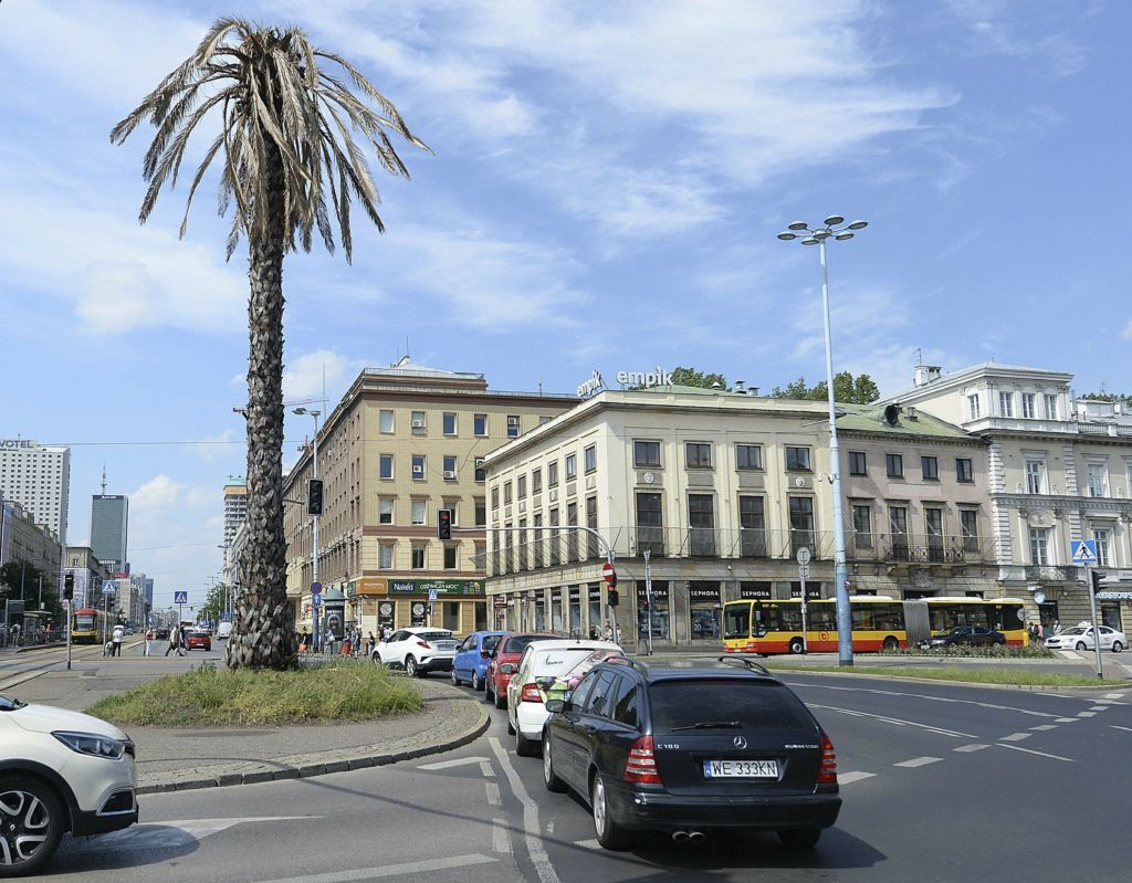 Note To Fox News This Is Not Palm Tree >> Warsaw S Plastic Palm Tree Dies To Mark Climate Threat E News Us