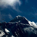 Nepal Seeks Help Identifying Bodies Found on Mount Everest – The New York Times