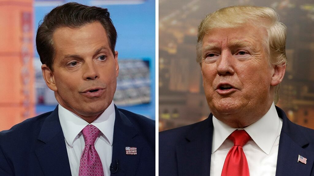 Scaramucci fires back at Trump on Twitter amid feud: 'You are losing